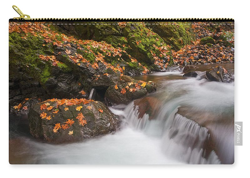 Autumn Carry-all Pouch featuring the photograph Autumn Litter by Mike Dawson