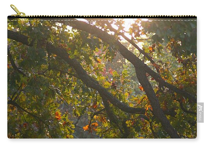 Autumn Carry-all Pouch featuring the photograph Autumn Morning Glow by Nadine Rippelmeyer