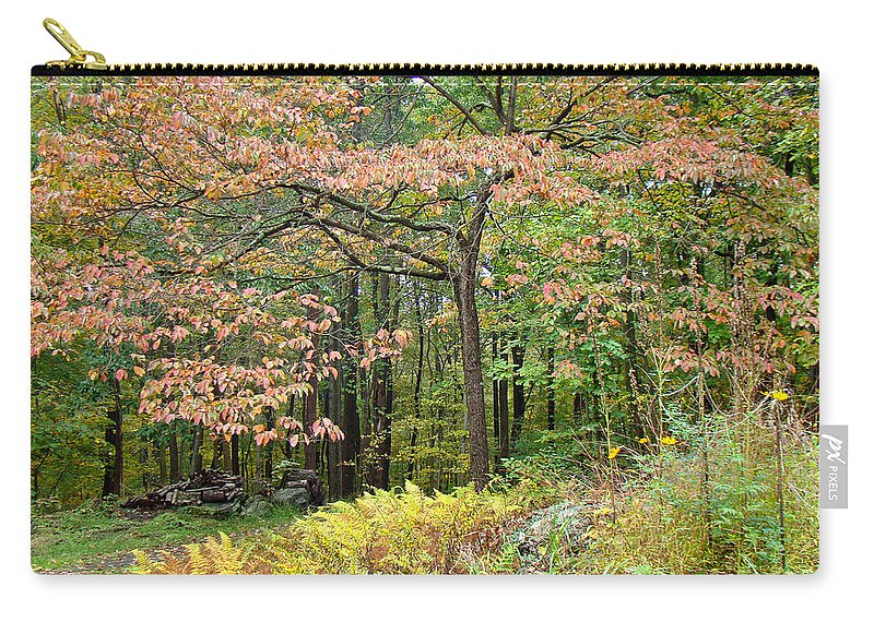Dogwood Carry-all Pouch featuring the photograph Autumn Paints A Dogwood And Ferns by Mother Nature