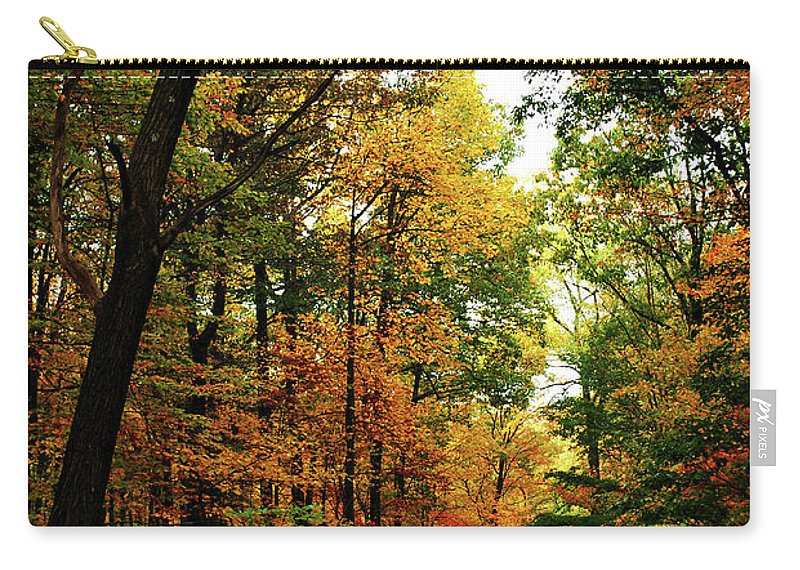 Autumn Carry-all Pouch featuring the photograph Autumn Path by Lori Tambakis