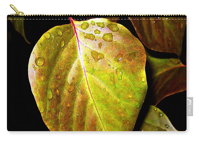 Autumn Carry-all Pouch featuring the photograph Autumn Rain by Will Borden