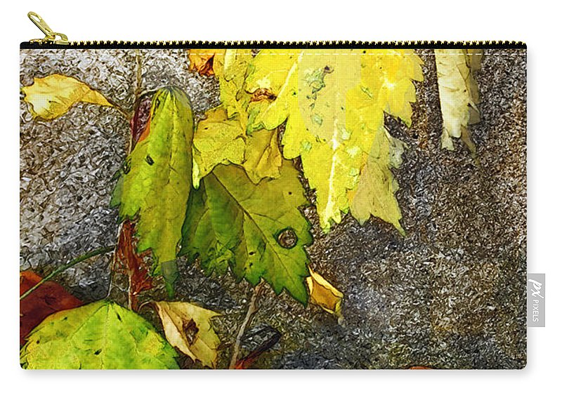 Autumn Carry-all Pouch featuring the painting Autumn Rainbow by RC DeWinter