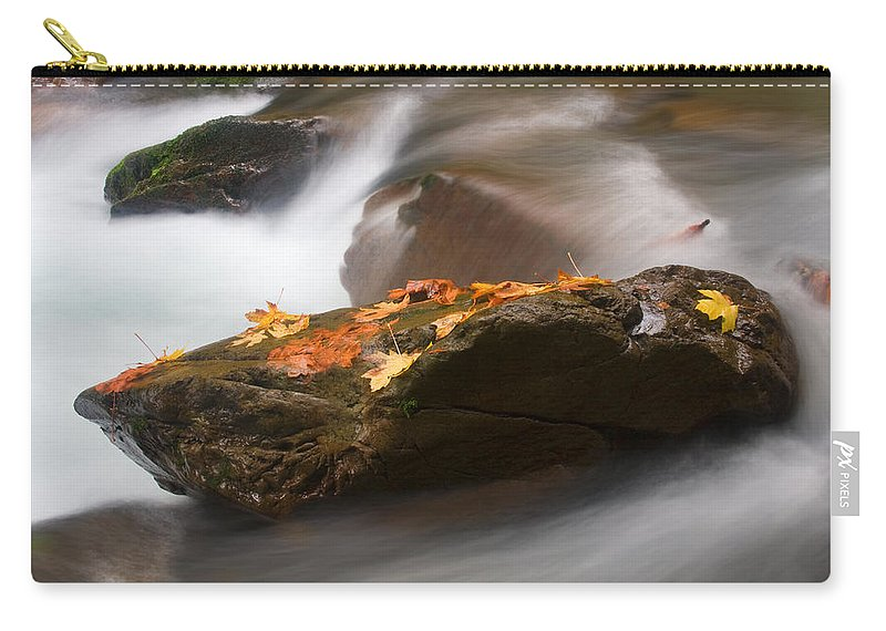 Leaves Carry-all Pouch featuring the photograph Autumn Resting Place by Mike Dawson
