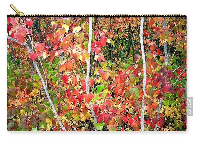 Autumn Carry-all Pouch featuring the photograph Autumn Sanctuary by Will Borden