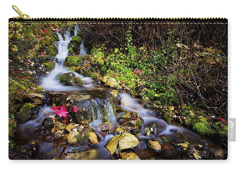 Nature Carry-all Pouch featuring the photograph Autumn Stream by Chad Dutson