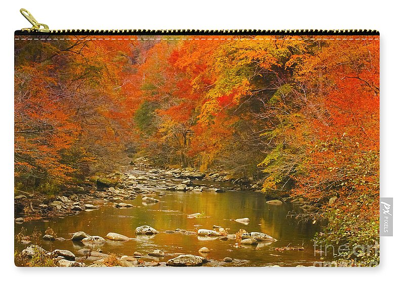 Trees Carry-all Pouch featuring the photograph Autumn Stream by Geraldine DeBoer