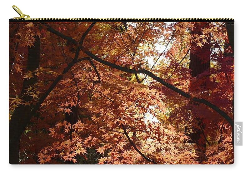 Spokane Carry-all Pouch featuring the photograph Autumn Sunshine Poster by Carol Groenen