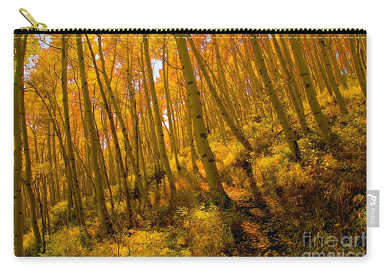 Autumn Carry-all Pouch featuring the photograph Autumn Trail by David Lee Thompson