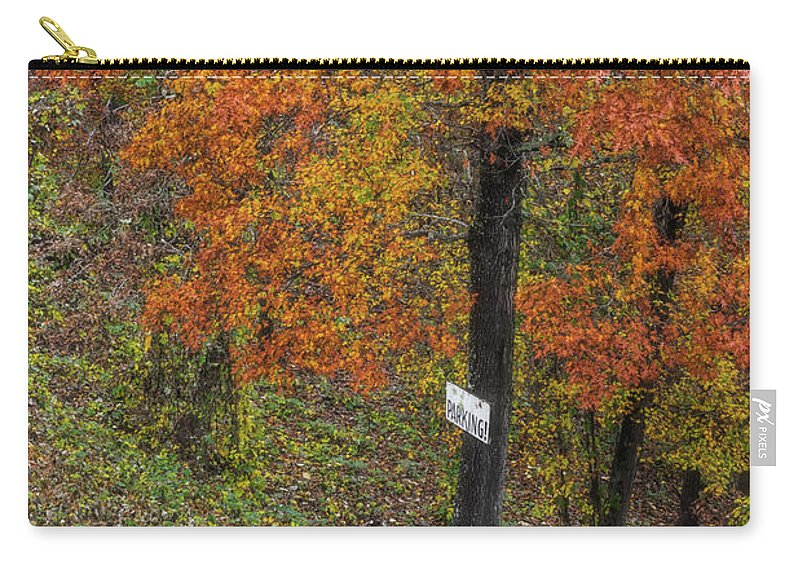 Tree Carry-all Pouch featuring the photograph Autumn Tree by Patricia Cale