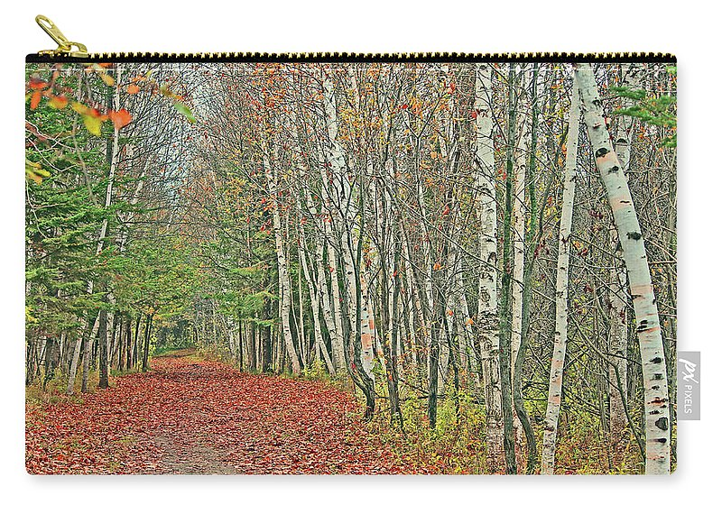 Landscape Carry-all Pouch featuring the digital art Autumn Walk by Andrea Jahn