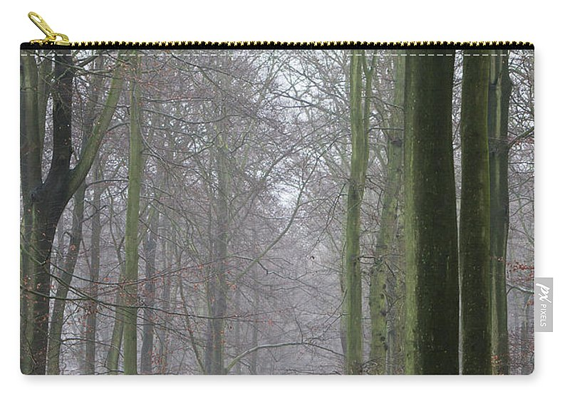 Autumn Carry-all Pouch featuring the photograph Autumn Woodland Avenue by Gary Eason
