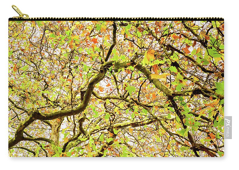 Autumn Carry-all Pouch featuring the photograph Autumnal Colours by Rajan Adhikari