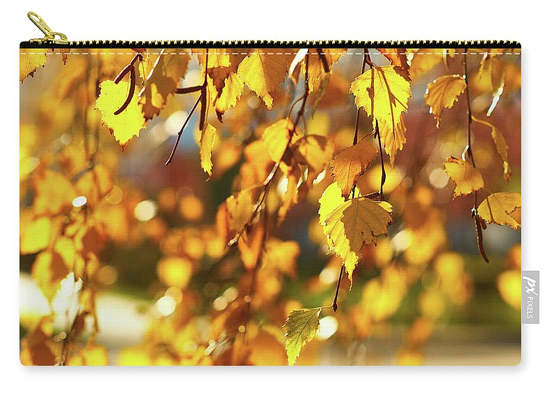 Autumnal Curtain Carry-all Pouch featuring the photograph Autumnal Curtain by Tgchan