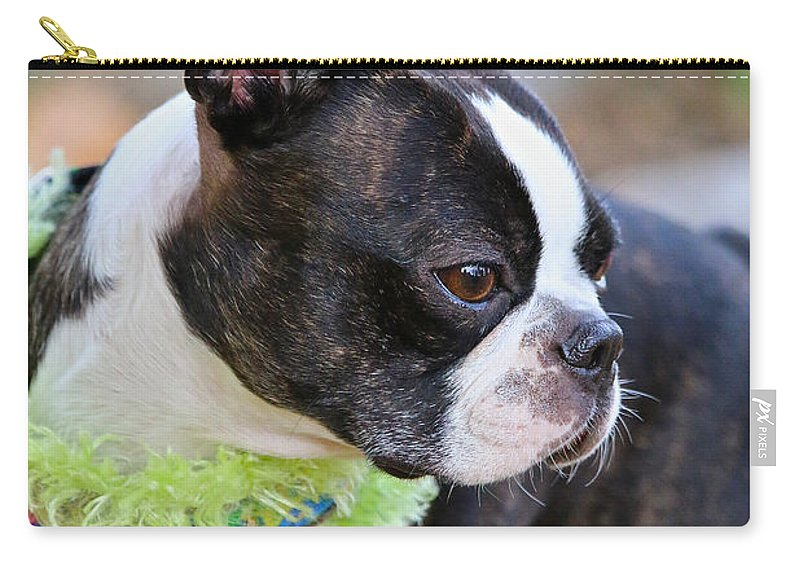 Animal Carry-all Pouch featuring the photograph Autumn's Pleasure by Susan Herber
