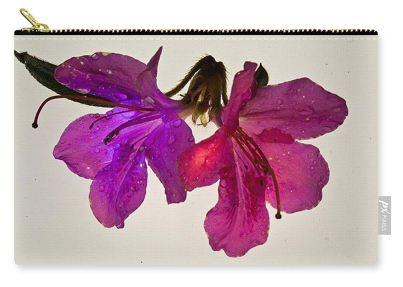 Azalea Carry-all Pouch featuring the photograph Azalea Doublet by Douglas Barnett