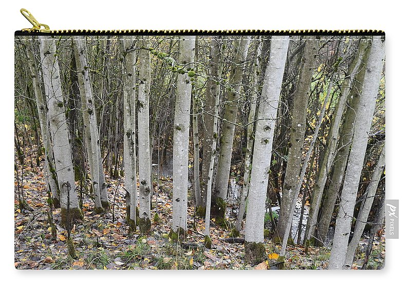 Trees Carry-all Pouch featuring the photograph Babbling Brook by Thomas Sexton