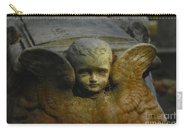 Angel Carry-all Pouch featuring the photograph Baby Angel by David Lee Thompson