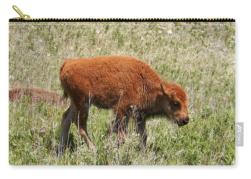 Bison Carry-all Pouch featuring the photograph Baby Bison by Pamela Peters