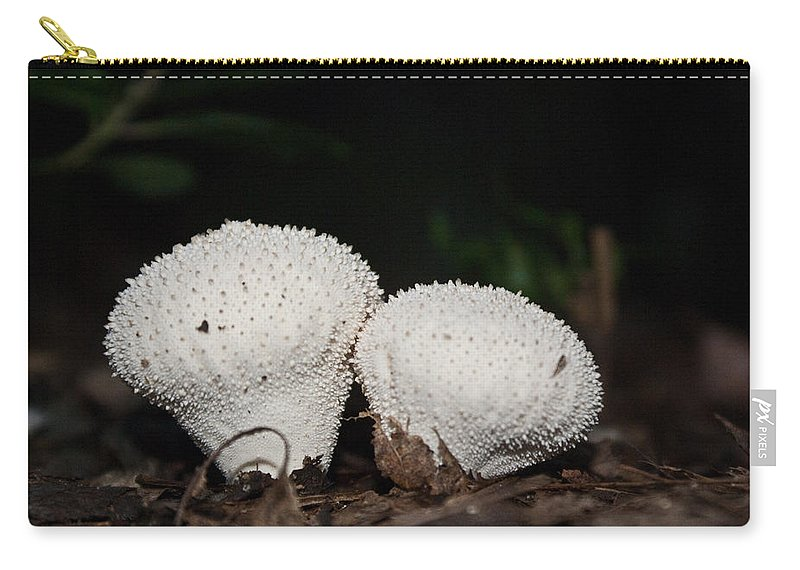 Puffballs Carry-all Pouch featuring the photograph Baby Puffballs by Douglas Barnett