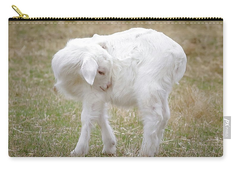 Baby Sheep Shy Carry-all Pouch