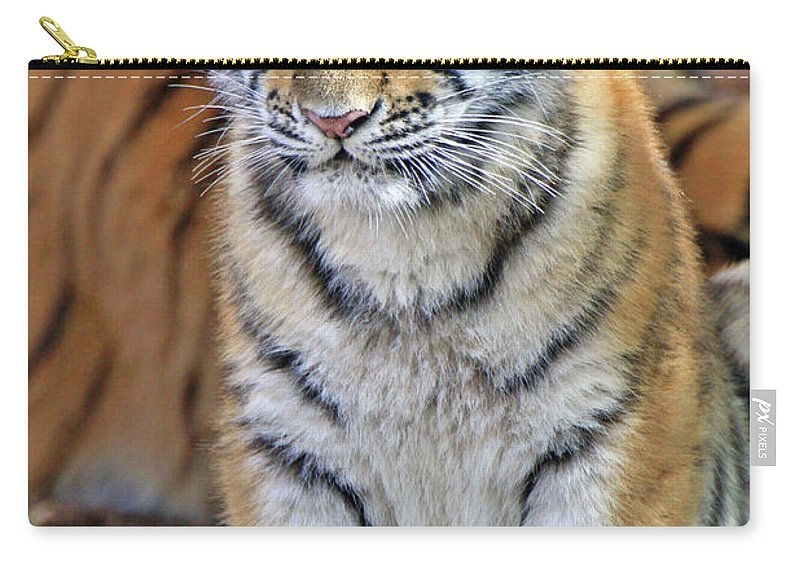 Tiger Carry-all Pouch featuring the photograph Baby Stripes by Scott Mahon