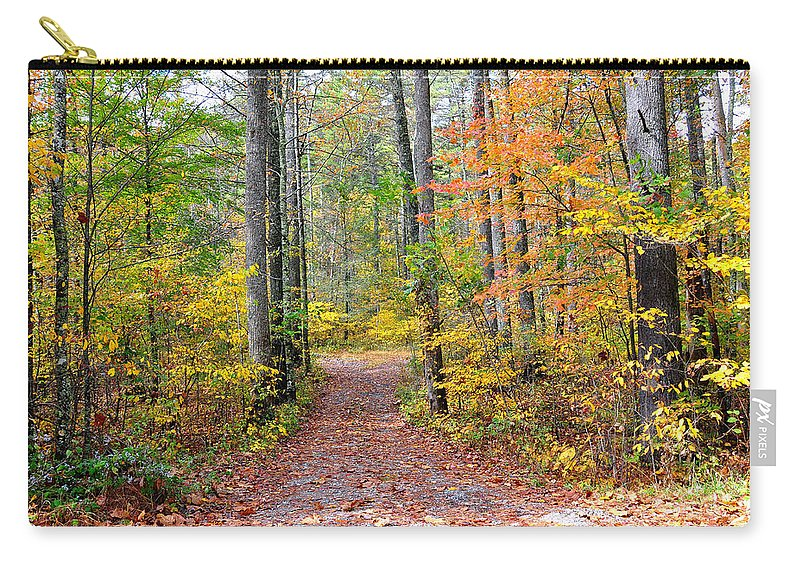 Woods Carry-all Pouch featuring the photograph Back Woods by Todd Hostetter