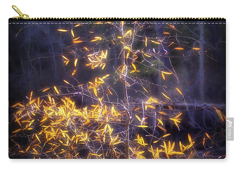 2d Carry-all Pouch featuring the photograph Backlit Beauty by Brian Wallace