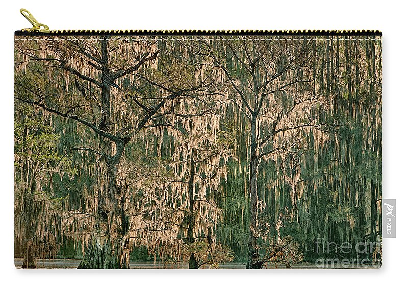 Dave Welling Carry-all Pouch featuring the photograph Backlit Moss-covered Trees Caddo Lake Texas by Dave Welling