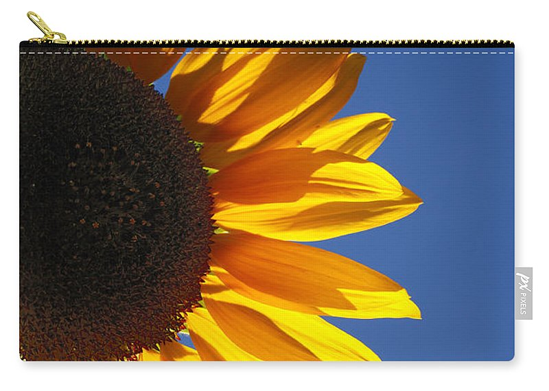 Back Light Carry-all Pouch featuring the photograph Backlit Sunflower by Gaspar Avila