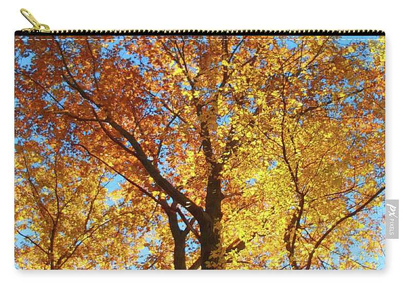 Nature Carry-all Pouch featuring the photograph Backyard Beauty by Roger Bester