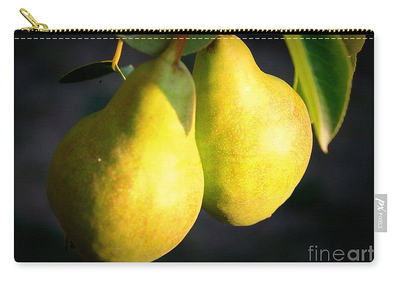 Food Carry-all Pouch featuring the photograph Backyard Garden Series - Two Pears by Carol Groenen