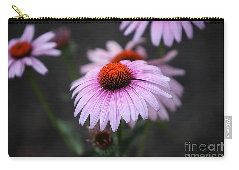 Alan Barcon Carry-all Pouch featuring the photograph Backyard Wonders by Amanda Barcon