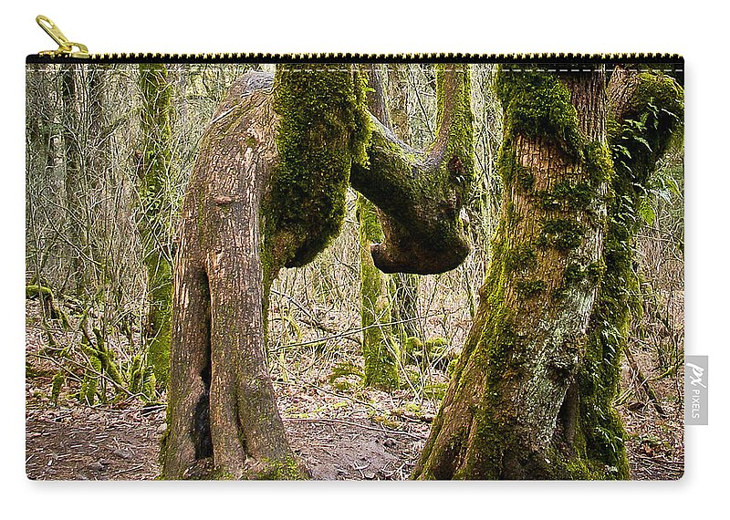 Trees Carry-all Pouch featuring the photograph Bad Back by Albert Seger