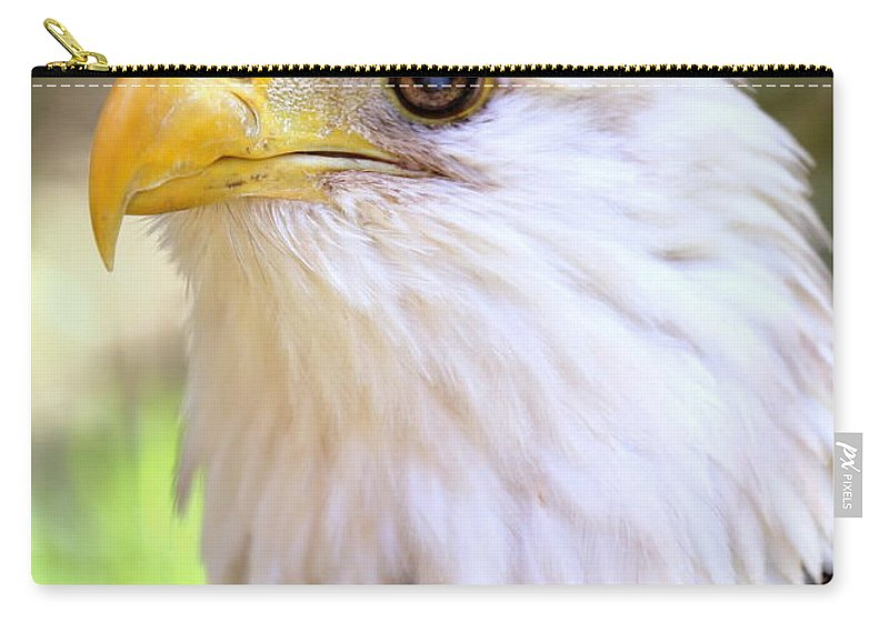Bald Eagle Carry-all Pouch featuring the photograph Bald Eagle 1 by Imagery-at- Work