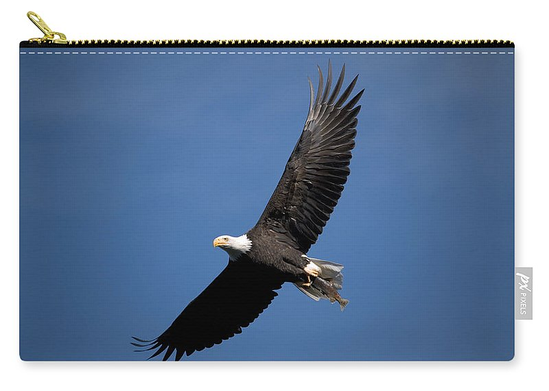 Bald Eagle Carry-all Pouch featuring the photograph Bald Eagle I by Randall Ingalls