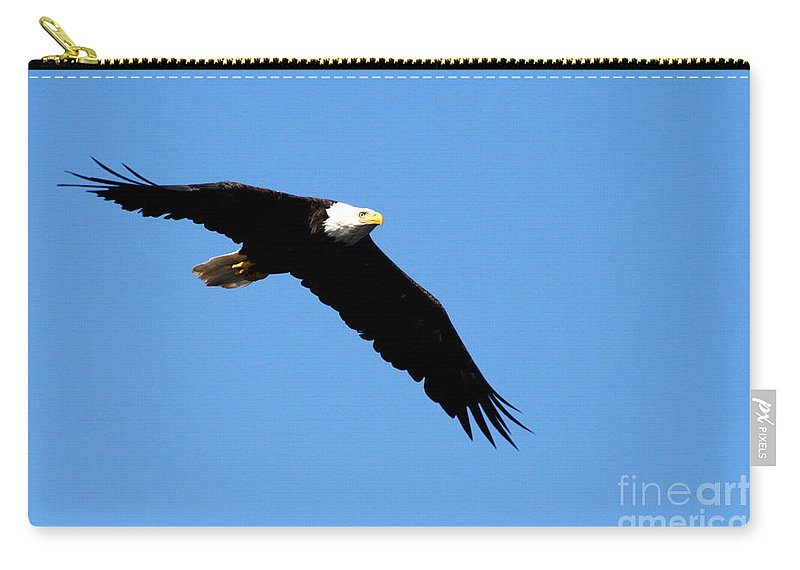Eagle Carry-all Pouch featuring the photograph Bald Eagle IIi by Thomas Marchessault