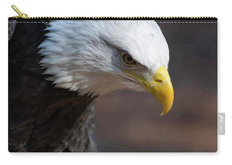 Bald Eagle Carry-all Pouch featuring the photograph Bald Eagle Landing by Chris Flees