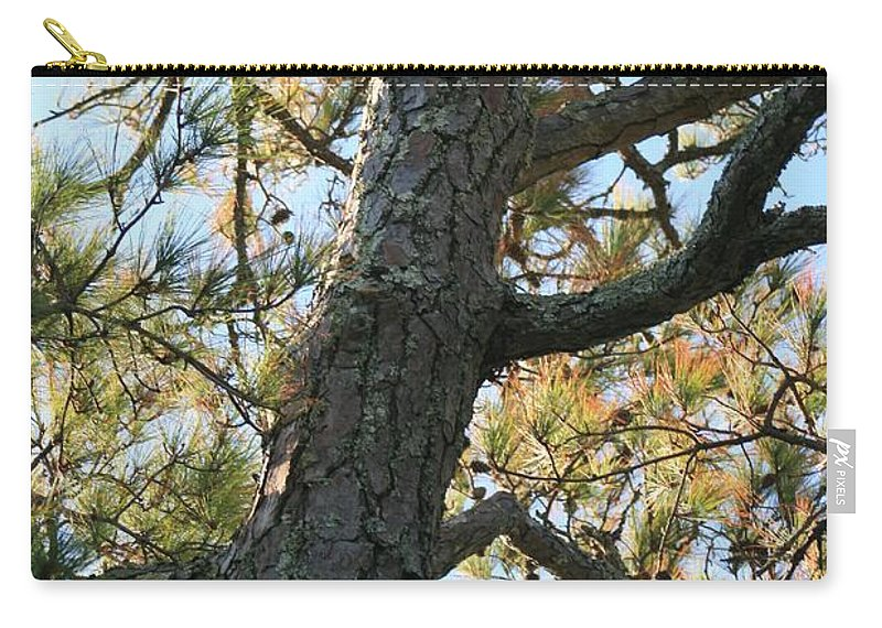 Tree Carry-all Pouch featuring the photograph Bald Head Tree by Nadine Rippelmeyer
