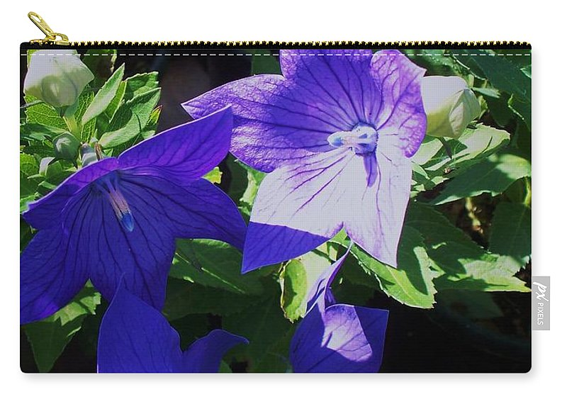 Landscapes Carry-all Pouch featuring the photograph Baloon Flower by Eric Schiabor