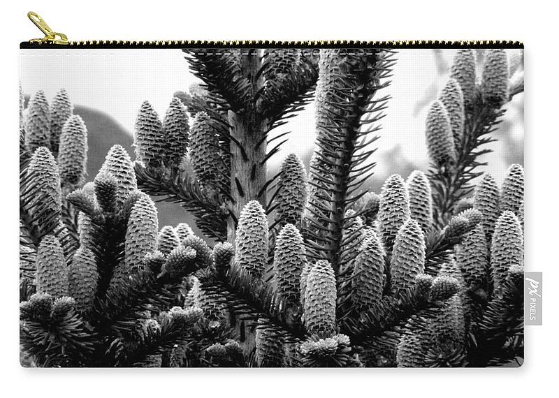 Black And White Photography Carry-all Pouch featuring the digital art Balsam Fir Buds Bw by Barbara Griffin