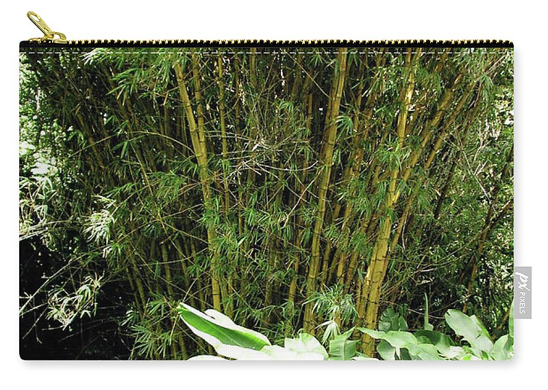 Bamboo Carry-all Pouch featuring the photograph F8 Bamboo by Donald k Hall