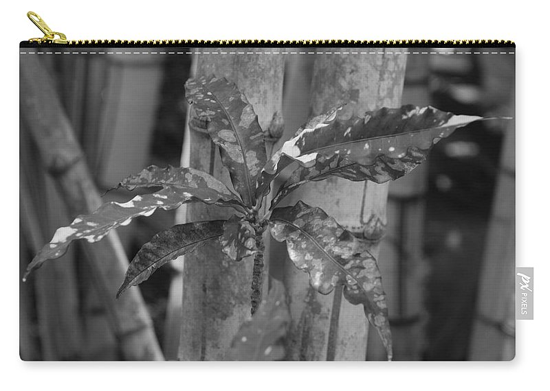 Macro Carry-all Pouch featuring the photograph Bamboo Flower by Rob Hans