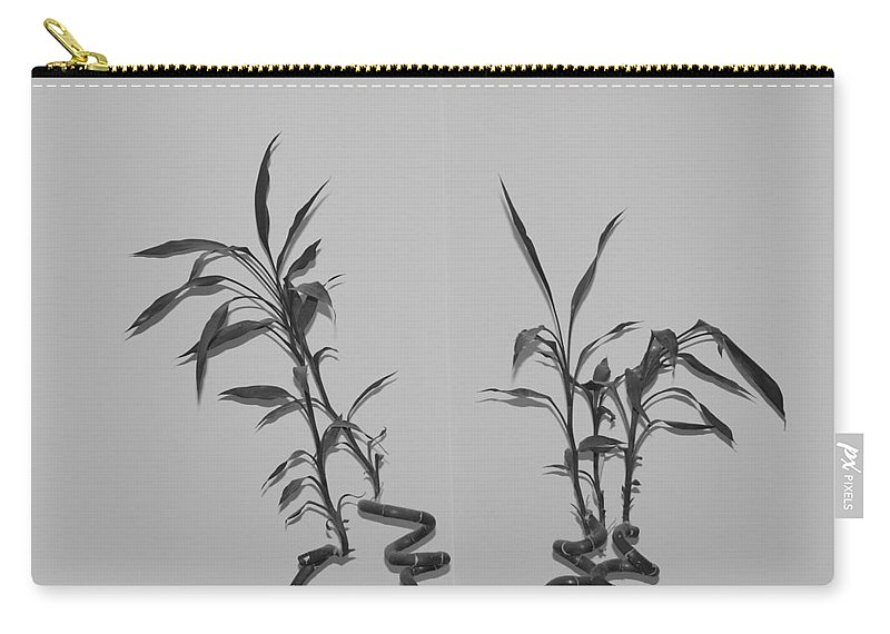 Black And White Carry-all Pouch featuring the photograph Bamboo Shutes by Rob Hans