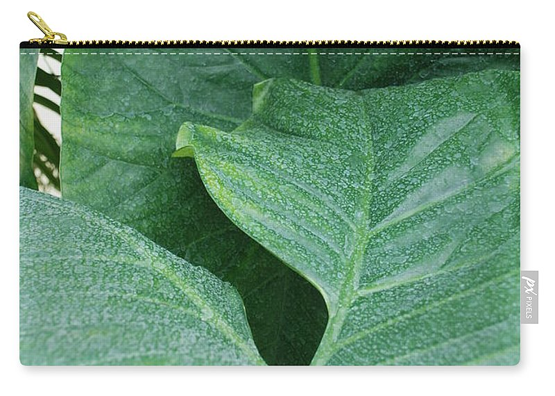 Macro Carry-all Pouch featuring the photograph Banana Leaves by Rob Hans