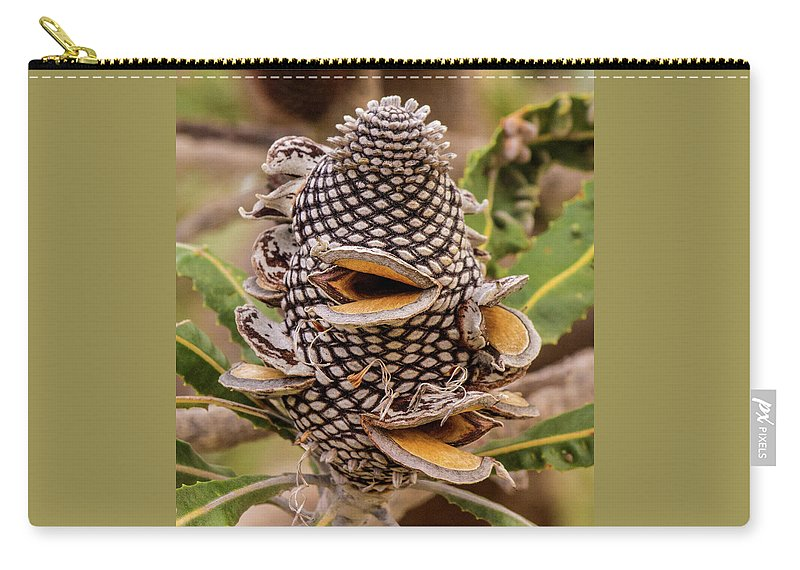 Banksia Carry-all Pouch featuring the photograph Banksia Cone by Tania Read