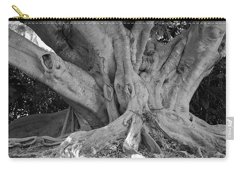 Tree Carry-all Pouch featuring the photograph Banyan Tree by Rob Hans