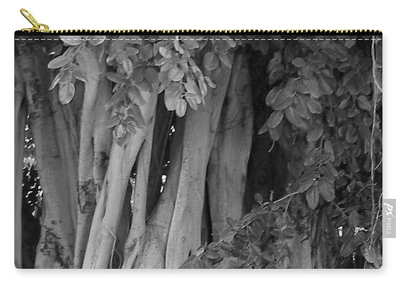 Carry-all Pouch featuring the photograph Banyans by Maria Bonnier-Perez