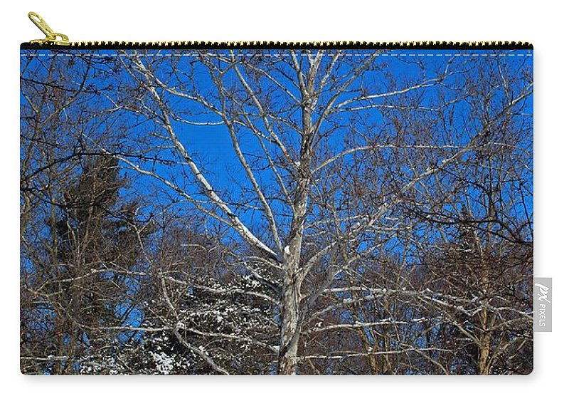 Tree Carry-all Pouch featuring the photograph Bare by Michiale Schneider