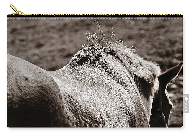 Horse Carry-all Pouch featuring the photograph Bareback by Angela Rath
