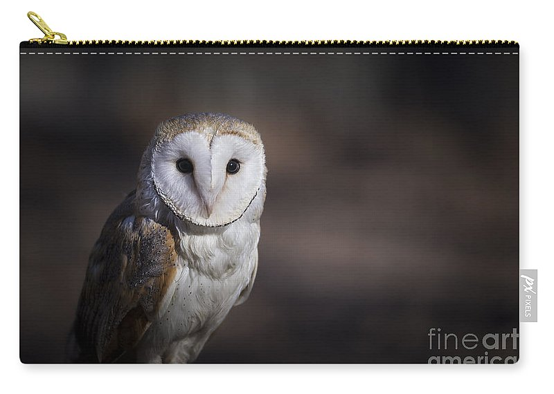 Owl Carry-all Pouch featuring the photograph Barn Owl by Andrea Silies